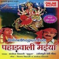 Sab Pahadwali Maiya Pe Chhod Dihani Pahadwali Maiya