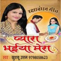 Aaj Hai Bhaiya Rakhi Ka Tyohar Pyara Mera Bhaiya