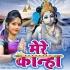 Download Radha Kanha Se Milne Jati Hai