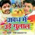 Download Awadh Me Ude Re Gulal Lal Rang Pyara Lage