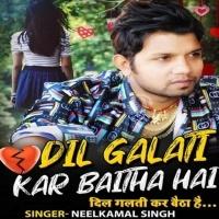 Dil Galti Kar Baitha Hai Galti Kar Baitha Hai Dil Dil Galati Kar Baitha