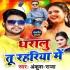 Download Roj Pakadalu Tu Rahairiya Me Hala Karela Siyar