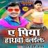 Download Naya Bushirt Kaha Lasaraila Puchhala Pa Hathawa Chalaila