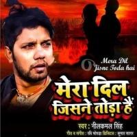 Download Mera Dil Jisne Toda Hai