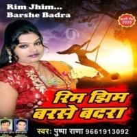 Yaad Aawe Saiya Sanghe Jhulal Jhulanwa Na Aaile Sajanwa Ae Rama Rim Jhim Barse Badra