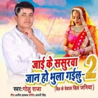 Download Jayi Ke Sasurwa Jan Ho Bhula Gailu 2