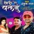 Download Chhodi A Balam Narami Ho Kalaiya