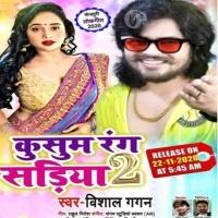 Lele Aiha Rajaji Bloue Kariya Kusum Rang Sadiya