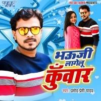 Download Bhauji Lagelu Kuwar