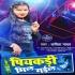 Play Aaye Haye Piyakadi Mil Gail