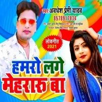 Download Hamro Lage Mehraru Ba