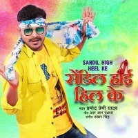 Download Sandil High Heel Ke