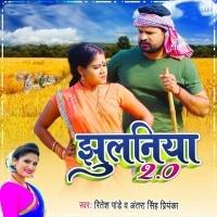 Download Jhulaniya Udhar Bate Tohra Pe Rajau