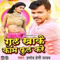 Gul Khake Kaam Full Kare Dj Remix
