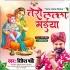 Download Tero Lalla Maiya Bada Chitchor Hai