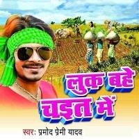 Download Look Bahe Chait Me