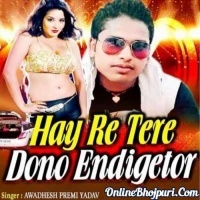Tere Dono Endicetor DJ Remix Song Hay Re Tere Dono Endigetor