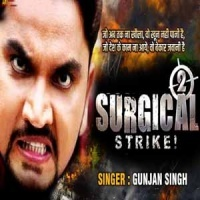 Download Surgical Strike 2
