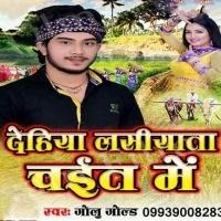 Download Dehiya Lasiyata Chait Me