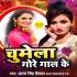 Download Hardam Chumat Rahela Gore Gal Ke DJ Remix Song