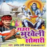 Selfie Khichal Jai Bhola Ji Ke Sath Me Gaura Bhukheli Somari