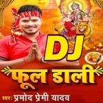 A Malin Batada Bhaw Mala Ke Ho DJ Remix Song Phool Dali