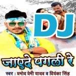 Pagali Re Bagali Khali Ho Gail DJ Remix Jayede Pagali Re
