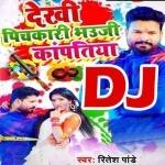 Lahanga Uthake Aagi Taapatiya DJ Remix Dekhi Pichkari Bhauji Kapatia