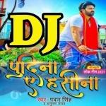 Lela Pudeena Bahari Aake Haseena DJ Remix Pudina A Hasina