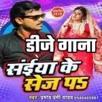 Rabar Wala Choli Diha Eyarau DJ Remix Song Saiya Ke Sej Pa