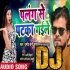 Download Palang Se Pataka Gaile DJ Remix