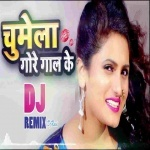 Hardam Chumat Rahela Gore Gal Ke DJ Remix Song Chumela Gore Gaal Ke