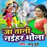 Ja Tani Naihar Bhola Bye Bye Gerua Colour Sadiya