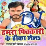 Aaga Chahe Pichha Lela Dj Remix Song Hamra Pichkari Ke Theeka Lela