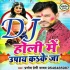 Play Holi Ke Upay Kake Ja A Raja DJ Remix Song
